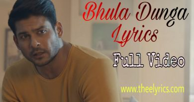 Bhula Dunga Lyrics | Bhula Dunga Lyrics In Hindi & English