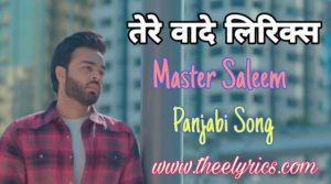 तेरे वादे लिरिक्स – Pnjabi song | Tere Vaade Lyrics – Master Saleem