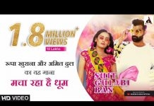 Suit Gulabi Ban lyrics in Hindi