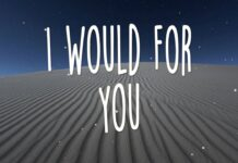 i Would For You Lauren Duski Lyrics